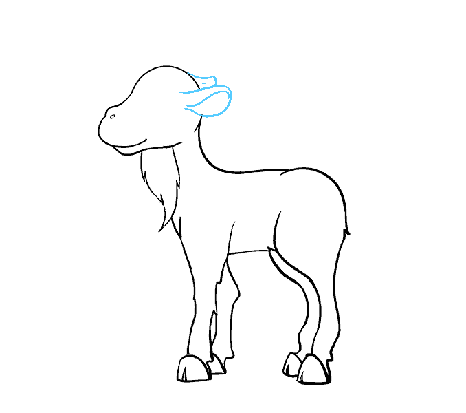 Cartoon goat drawing at. Seal clipart easy draw