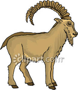 Brown mountain royalty free. Clipart goat wild goat