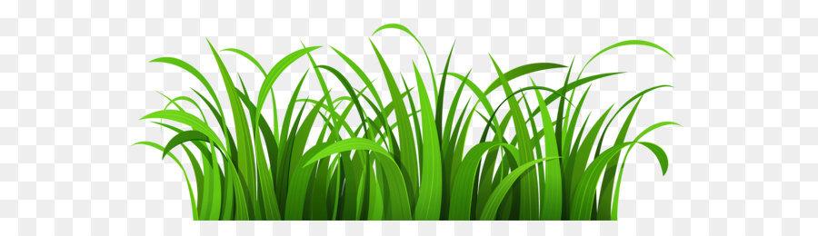 Blog clip art patch. Clipart grass