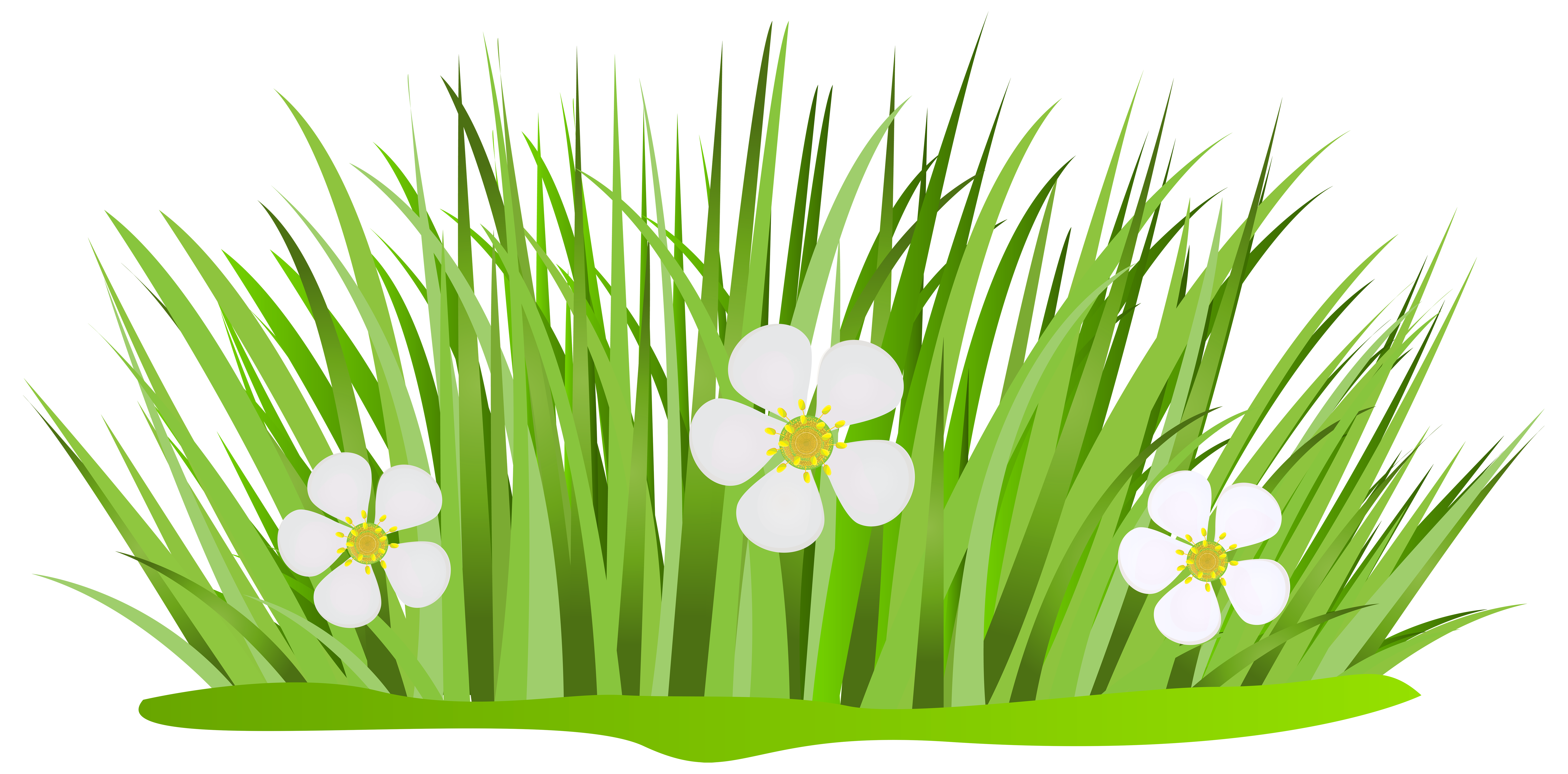Grass clipart pencil and. Flower patch png