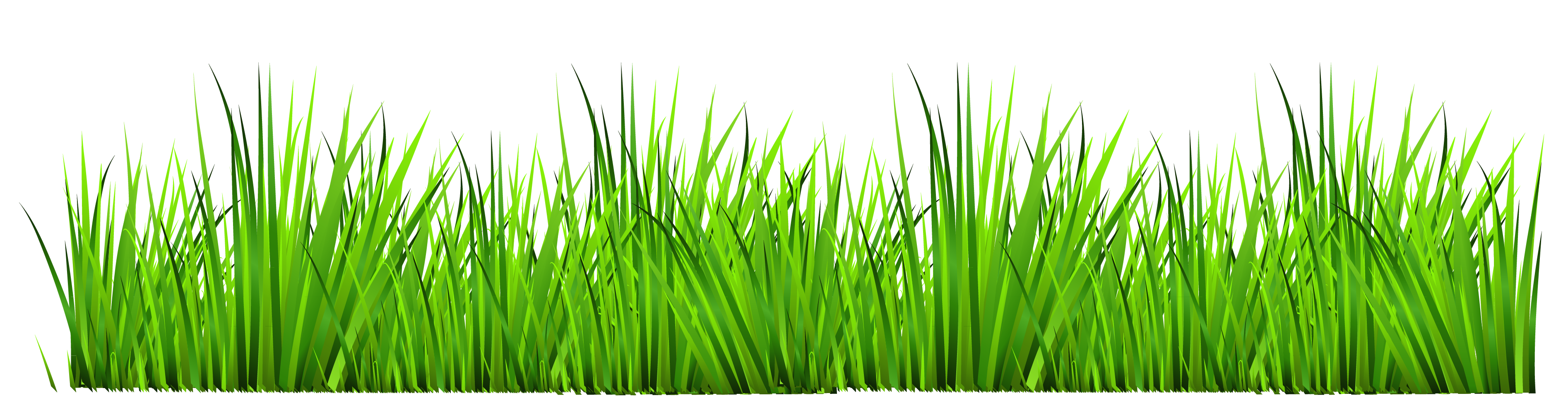 Poppy clipart green grass flower. Transparent free clip art