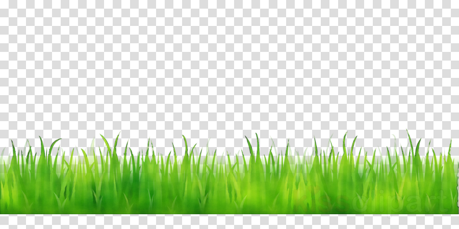 Clipart grass animated. Green background illustration
