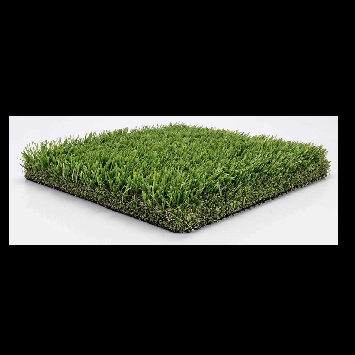 Clipart grass bermuda grass. Turfhub landscape collection