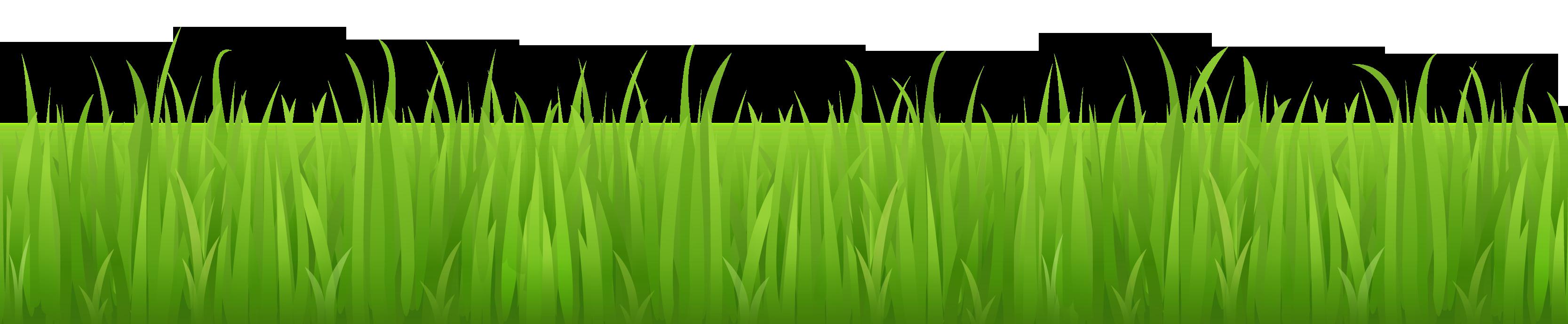 Field cloud grass background