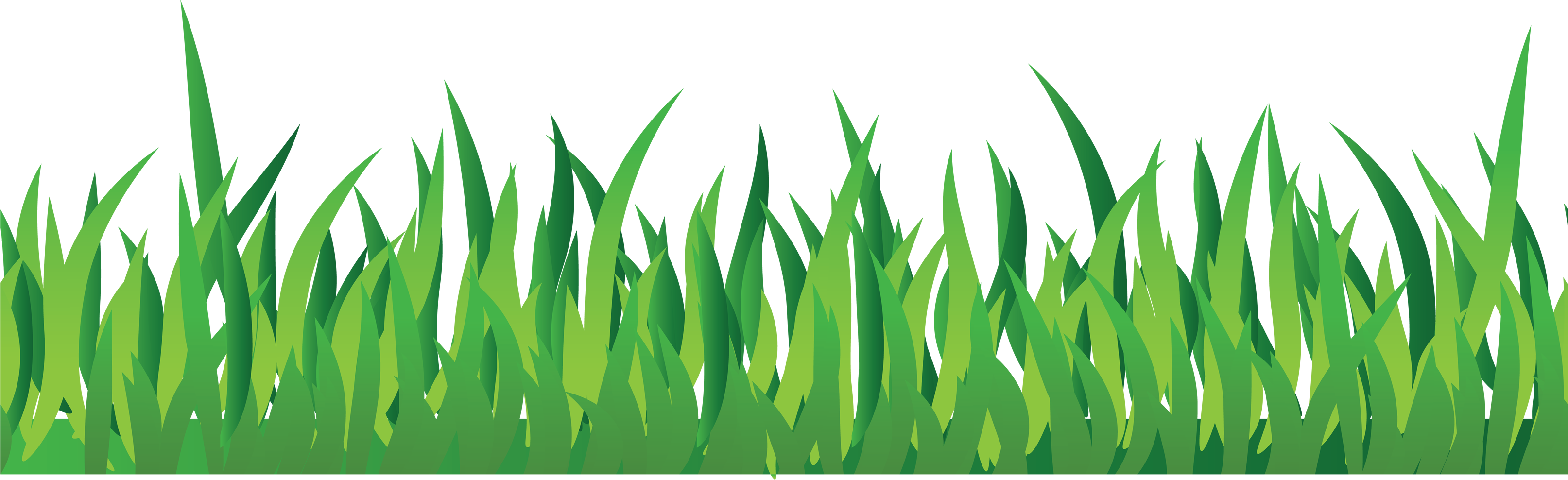 Clipart grass bermuda grass. Png images pictures