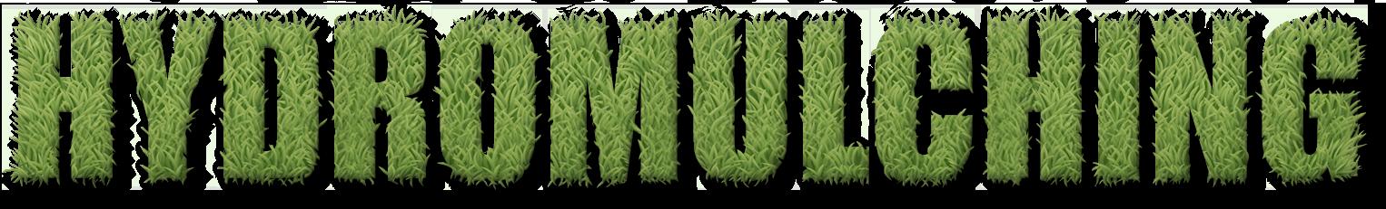 West texas lawn the. Clipart grass bermuda grass