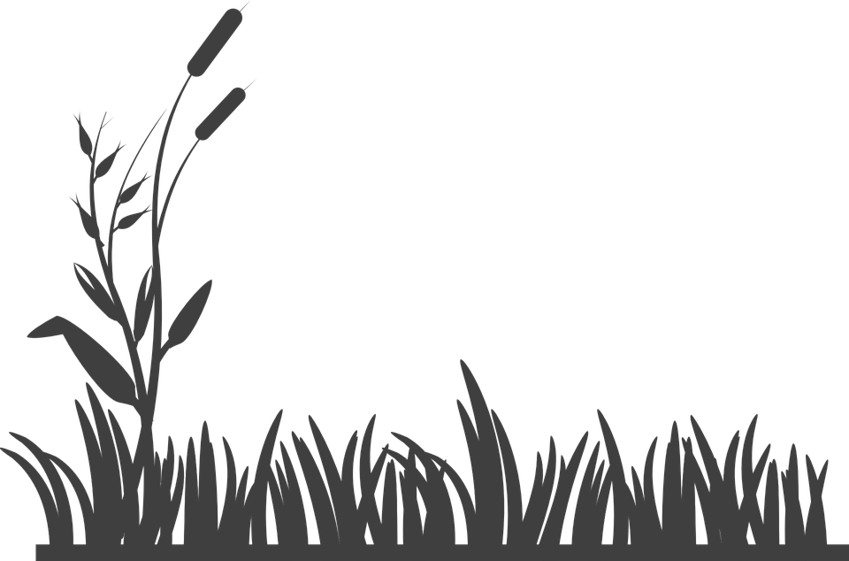 Clipart grass black and white. Free image on pixabay
