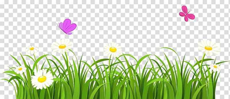 Borders transparent background png. Clipart grass border design