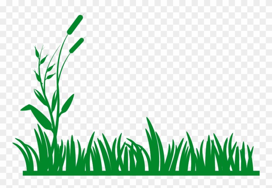 Pictures clip art png. Clipart grass border design