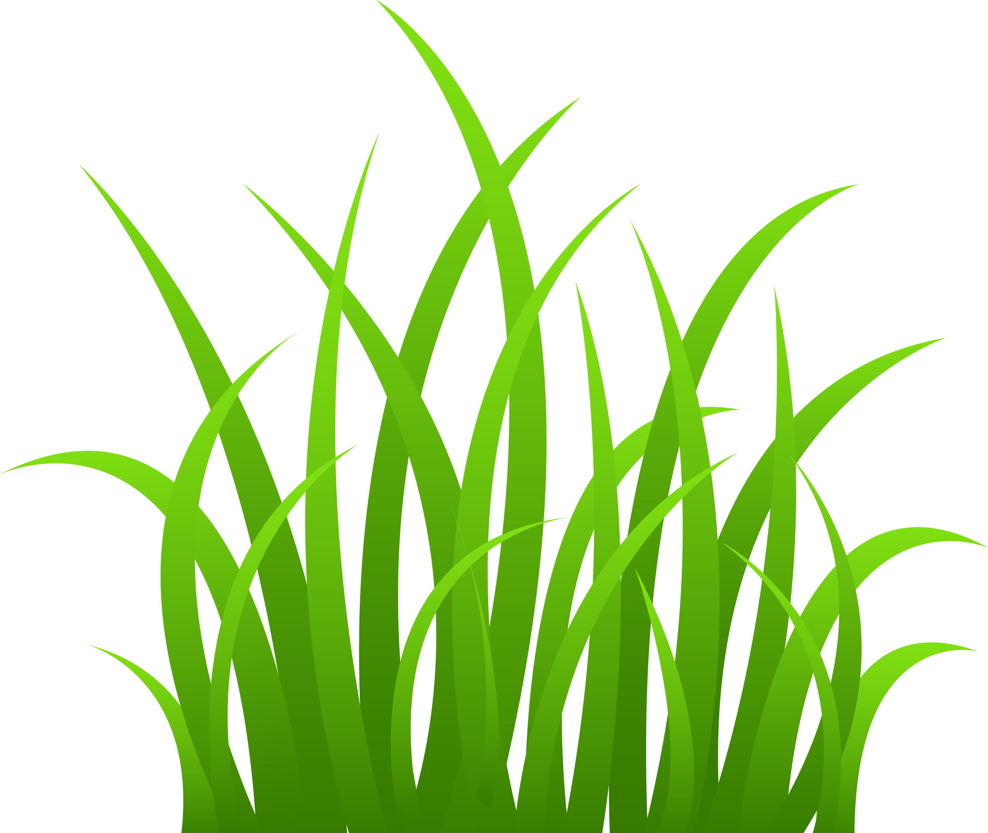 Clipart grass buffalo grass.  collection of png