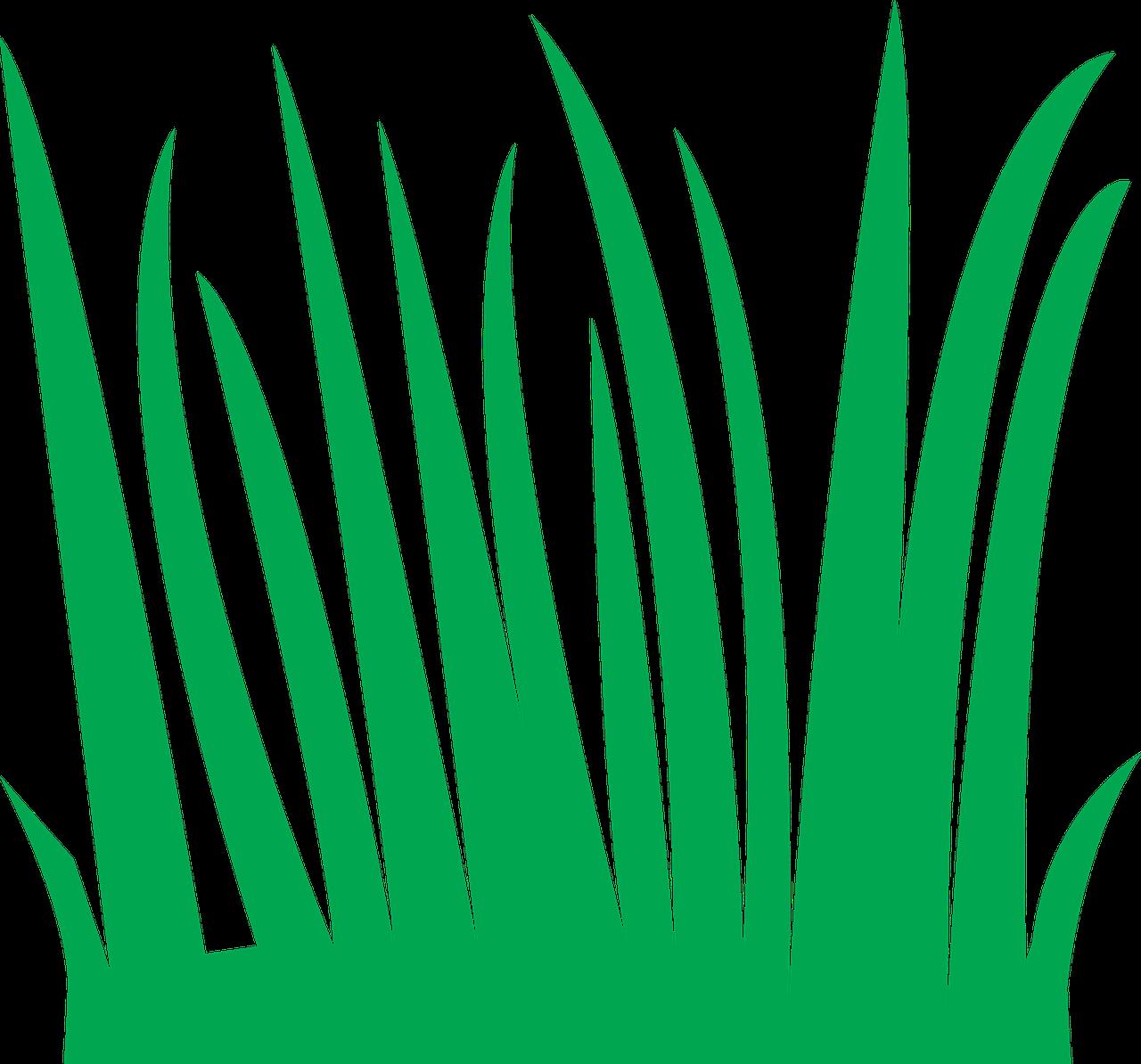 Green nature meadow field. Clipart grass bulletin board