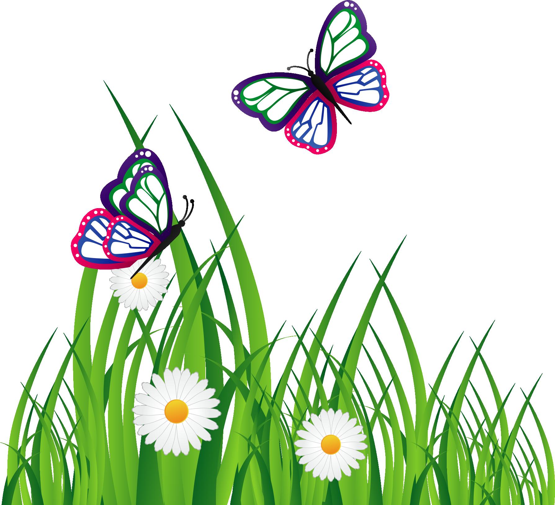 Clipart grass butterfly. Adobe illustrator graphic design