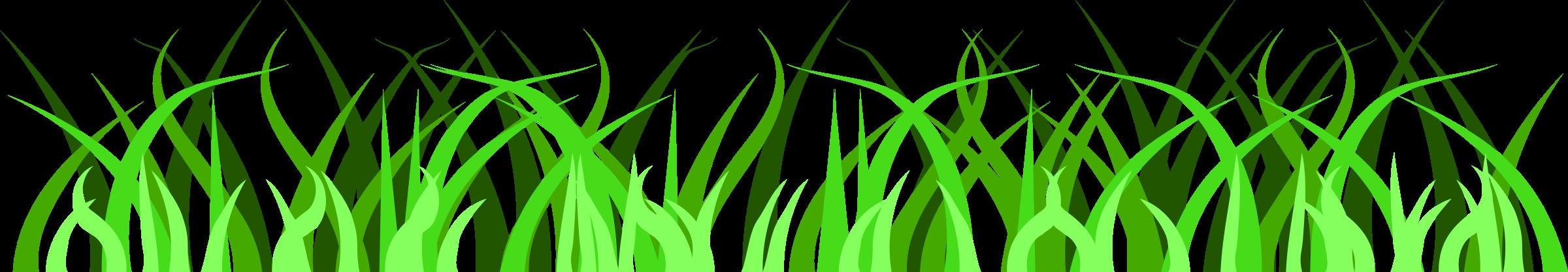 Ground grassy ground