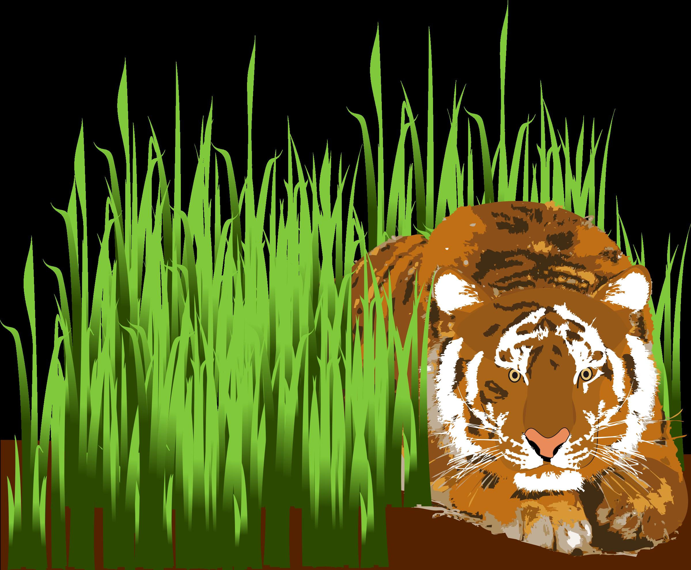 Big image png. Clipart tiger bengal tiger