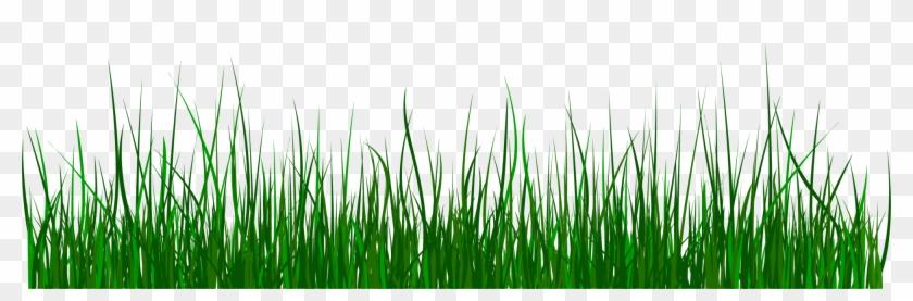 Green clip art gif. Clipart grass clear background