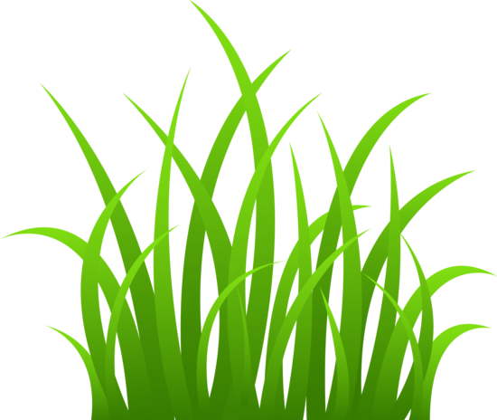 Clip art on transparent. Clipart grass clear background
