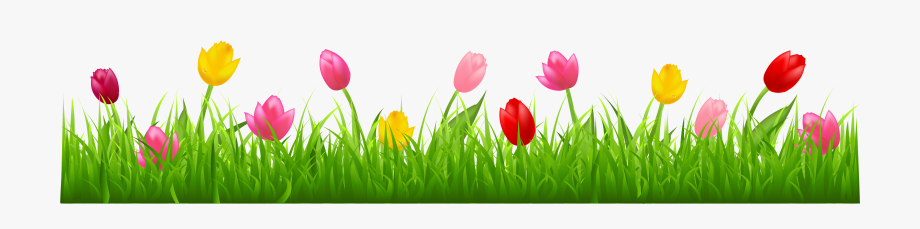 Clipart grass colorful. With tulips png