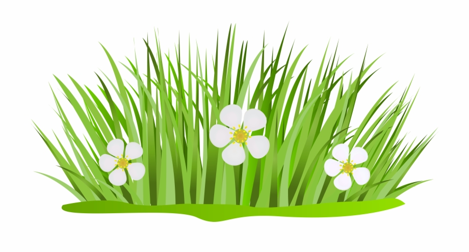 Clipart grass corner. With flowers png clip