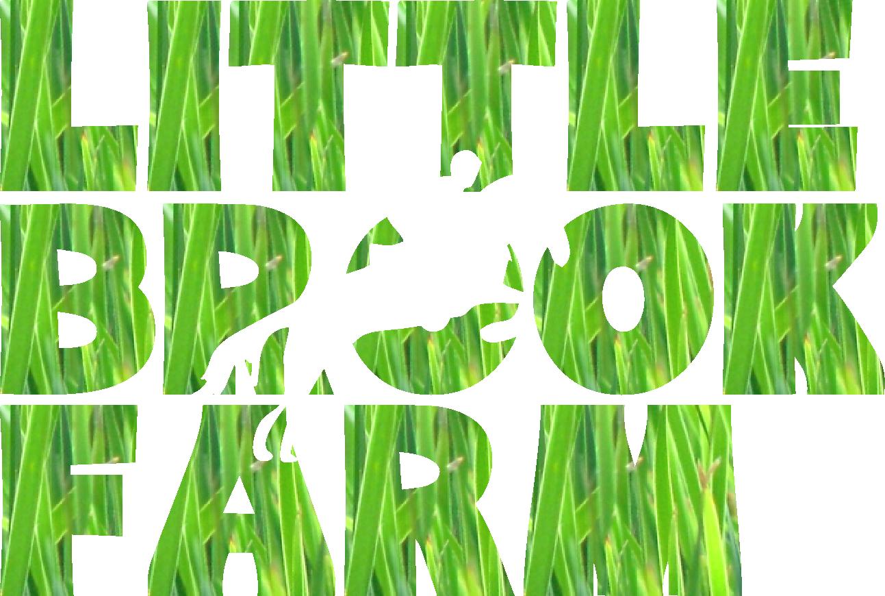 Clipart grass cut out. Cutout blanket little brook