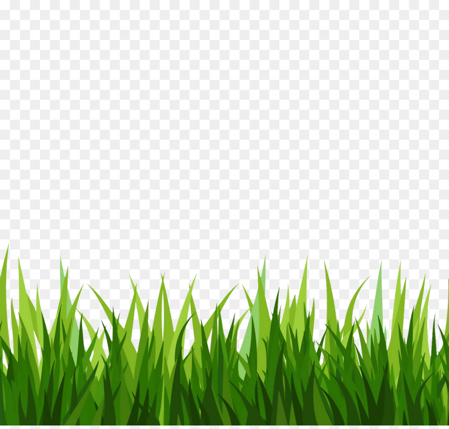 Green background png download. Clipart grass cut out