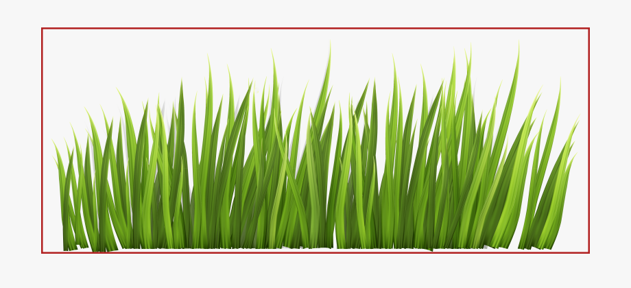 Flower png free cliparts. Clipart grass divider