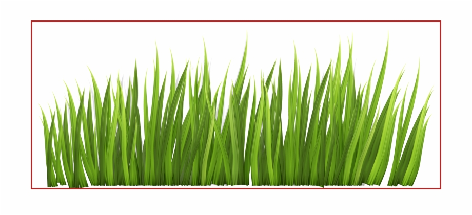 Clipart grass divider. Stunning fence with and