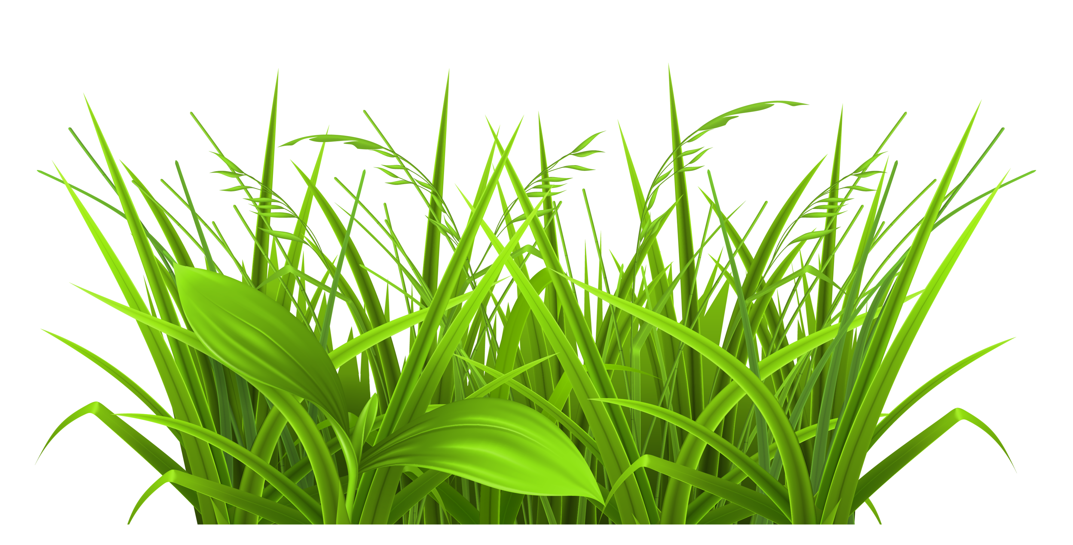 Silhouette free at getdrawings. Outline clipart grass