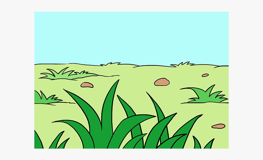 Draw step by free. Clipart grass easy