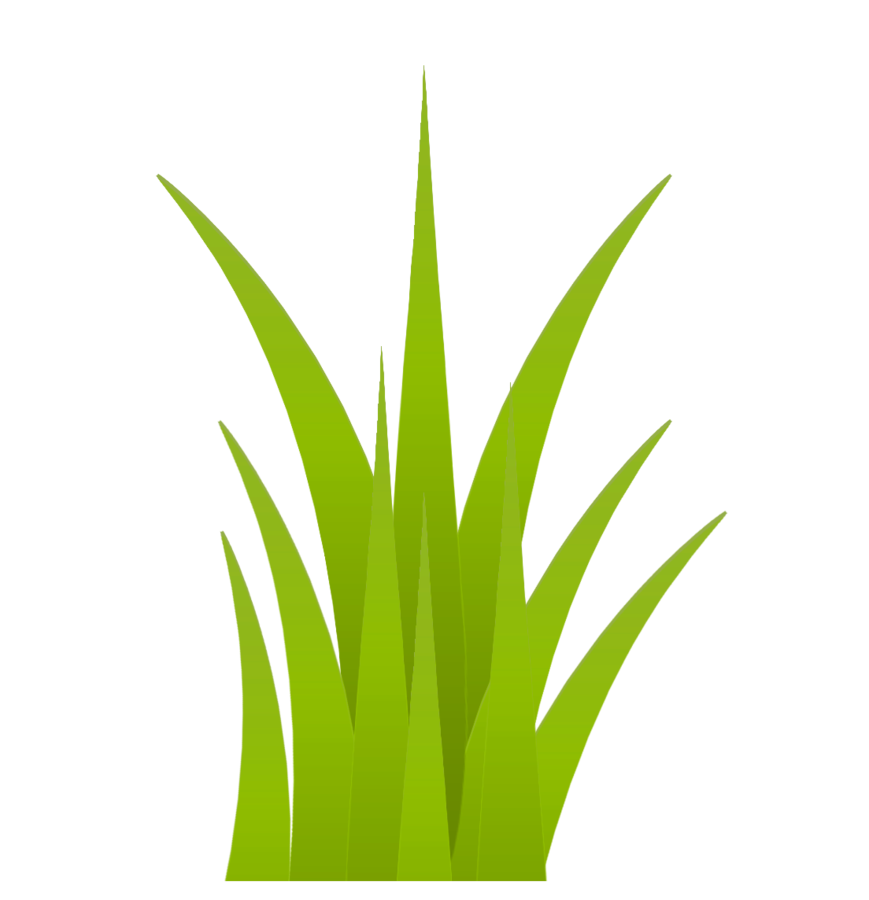Clipart grass elephant grass. Pin by sandya on