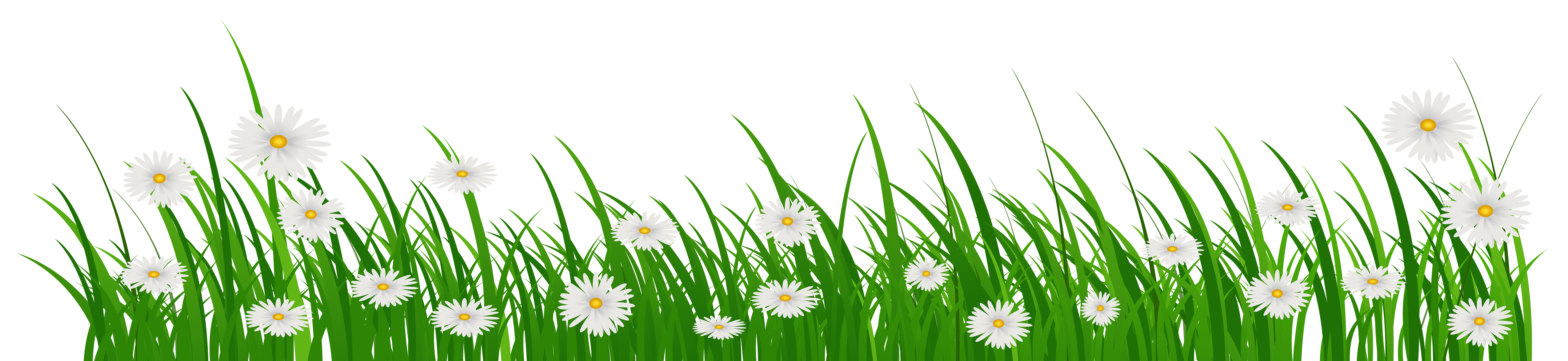 Clipart grass flower. With flowers png clip