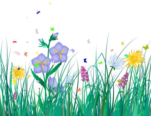 Pin on baby milestones. Flower clipart grass