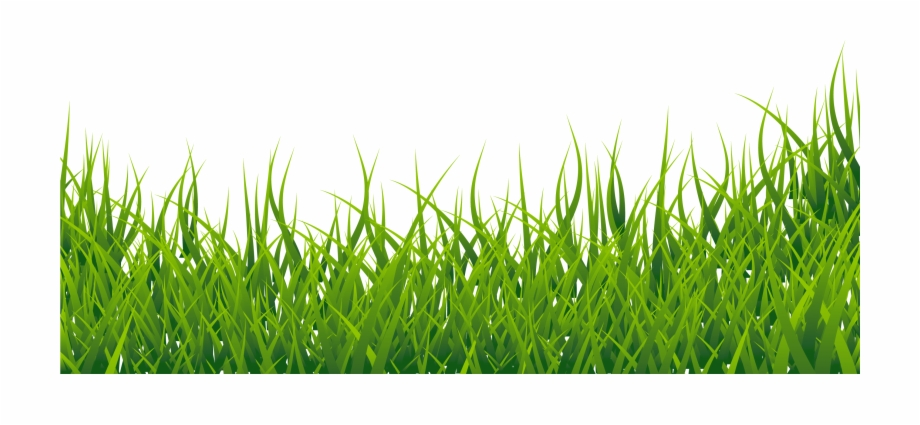 Clip art library . Clipart grass fodder