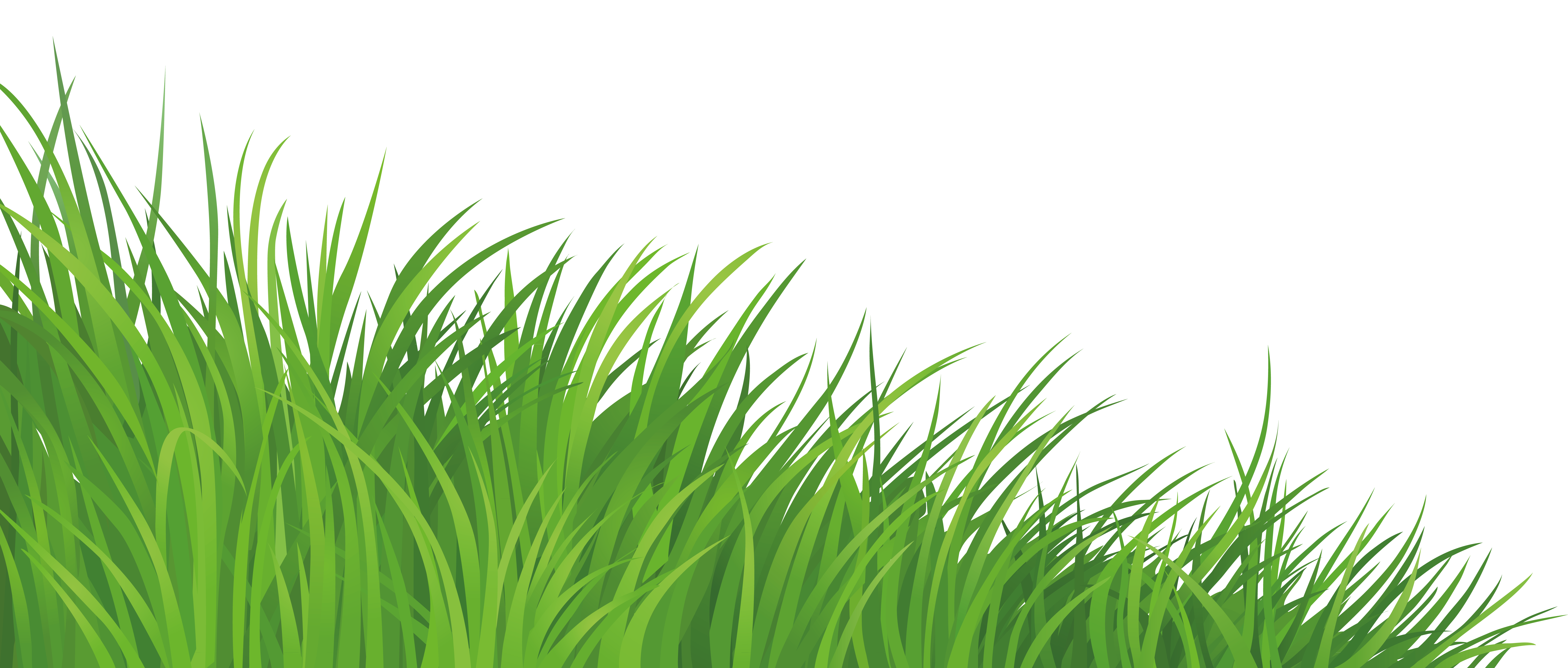 Element png picture gallery. Clipart grass fodder