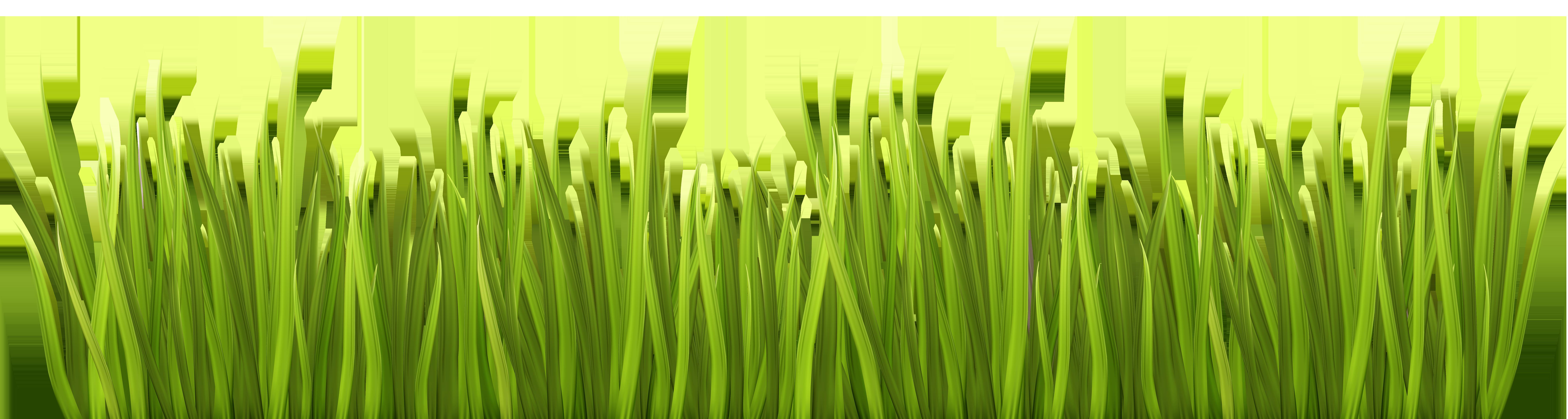 Grass clipart spring. Png transparent clip art