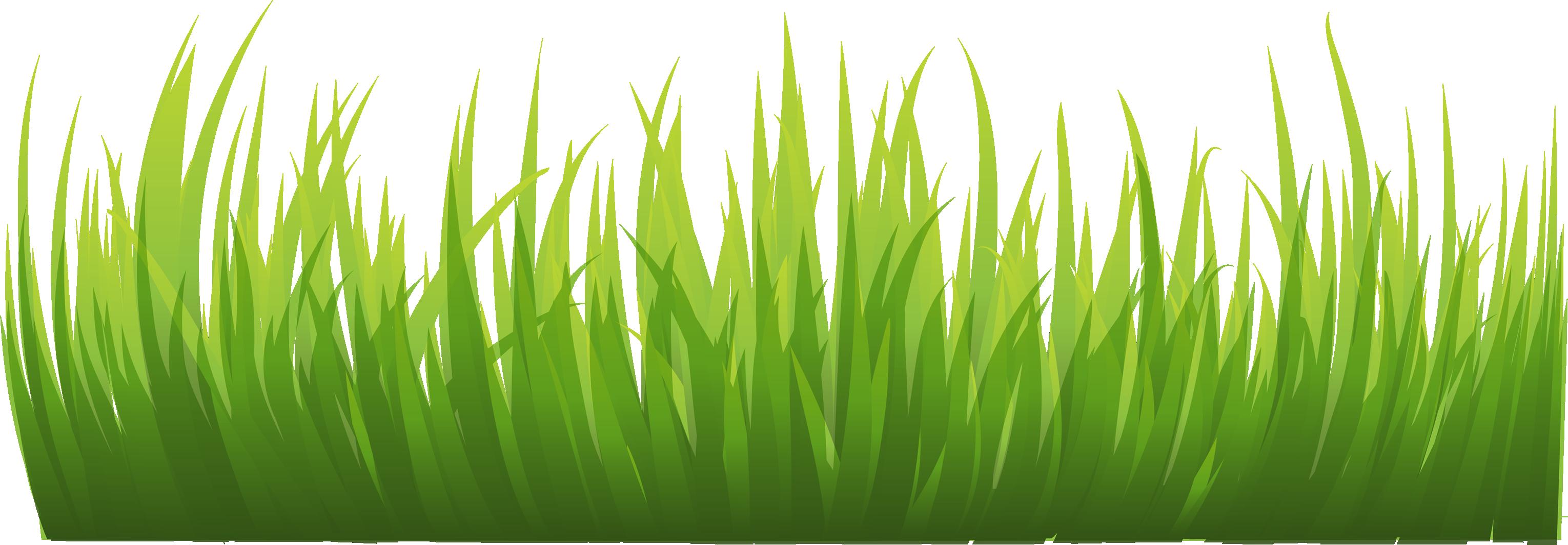 Pin by kushalagarwalkushal on. Clipart grass food