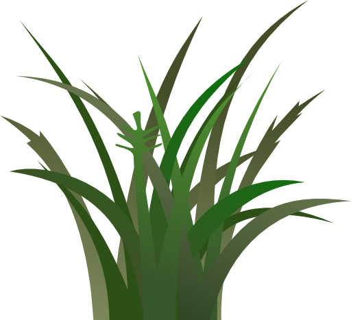 Free images wikiclipart . Clipart grass food