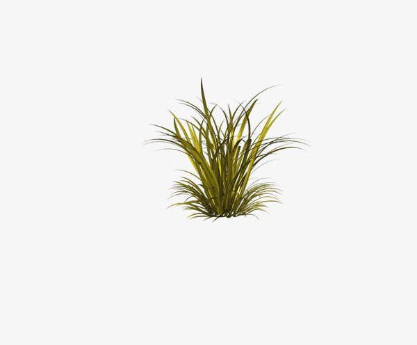 Clipart grass forest grass. Png creative