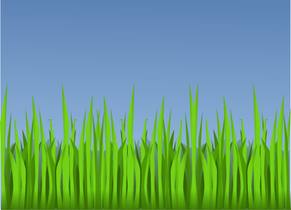 Download lawn png . Clipart grass forest grass