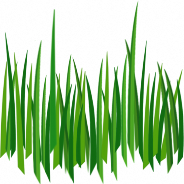 Pin by kushalagarwalkushal on. Clipart grass forest grass