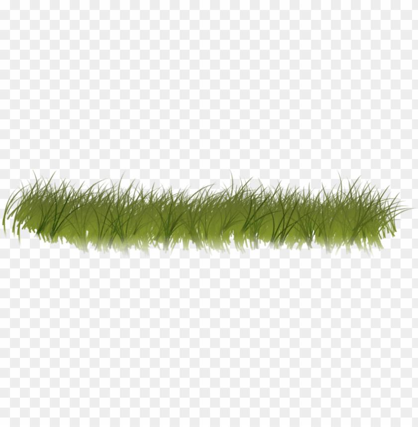 Clipart grass forest grass. Transparent png