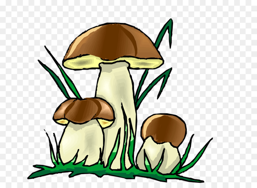 Green background png download. Clipart grass fungus