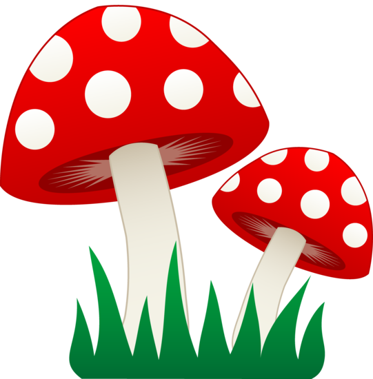 Clipart grass fungus. Two mushrooms in free