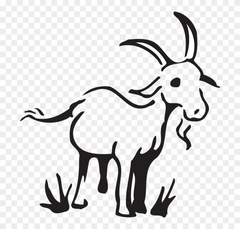 Barn farm grass animal. Goat clipart standing
