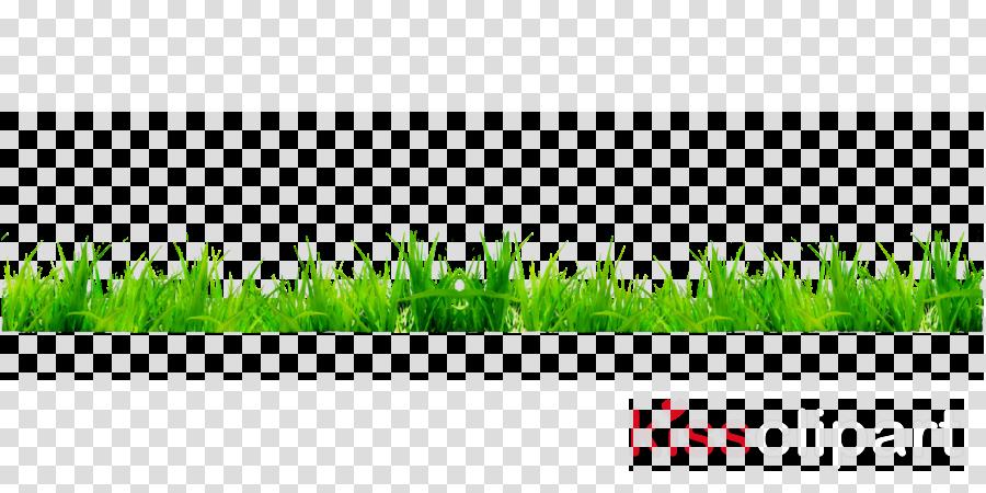 Clipart grass golf. Green background