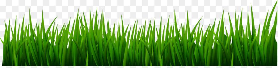 Green background ball . Clipart grass golf