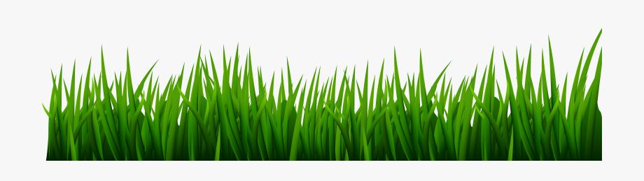 Png clip art image. Clipart grass golf