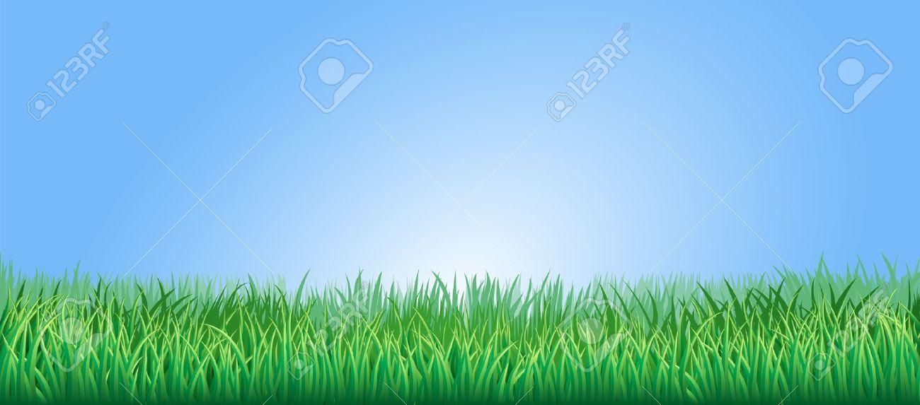 Free cliparts download clip. Clipart grass grass field