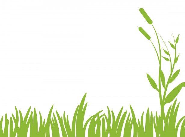 Green free stock photo. Clipart grass grassland