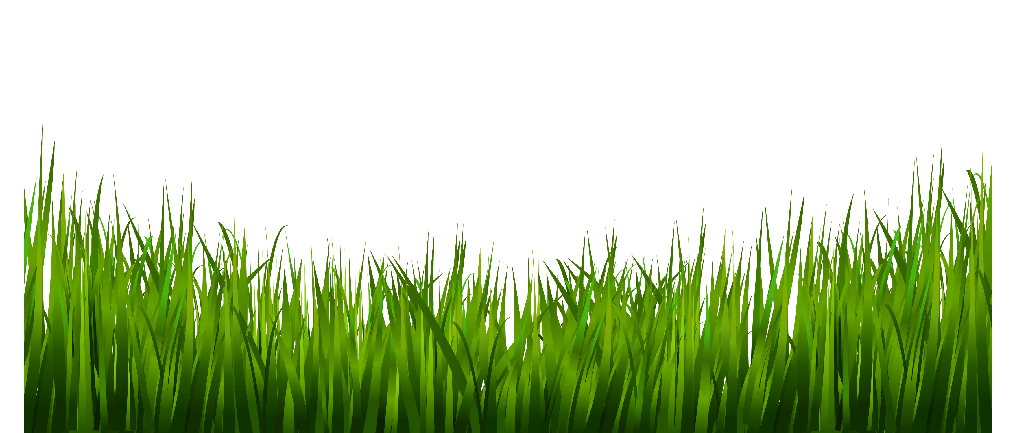 Png images a live. Clipart mountain grass