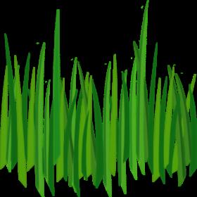 Pin by meme ali. Clipart grass grassland